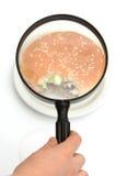 Personne examinant un hamburger Photo libre de droits