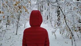 Personne marchant dans la forêt couverte par neige, appréciant la beauté de nature d'hiver, vue de dos banque de vidéos