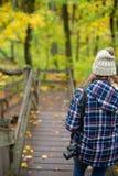 Personne trimardant en montagnes de porqupine en automne image libre de droits