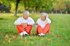 personnes âgées de couples ensemble Photos stock