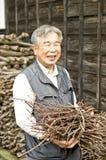 Personnes âgées en bonne santé Image stock