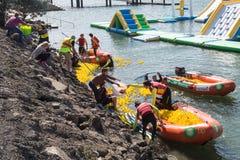 Personnes dans des bateaux gonflables rassemblant des milliers de canards en caoutchouc après une course photos libres de droits