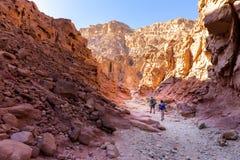 Personnes de couples augmentant le voyage se baladant de marche de traînée en pierre de désert Photo libre de droits
