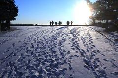 Personnes de marche d'hiver Image libre de droits