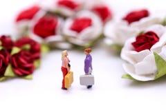 Personnes miniatures : Couples de l'amour avec les roses rouges et les roses blanches Photo libre de droits