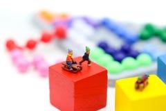 Personnes miniatures : Enfant ayant l'amusement pour jouer le glisseur sur coloré Photos libres de droits