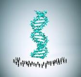 Personnes minuscules autour d'un brin d'ADN Photos libres de droits