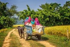 Personnes népalaises voyageant sur un chariot en bois joint Images libres de droits