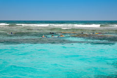 Personnes naviguantes au schnorchel en mer ouverte Image stock