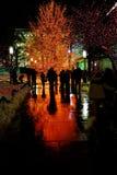 Personnes Salt Lake City de place de temple de lumières de Noël Photos libres de droits