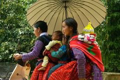 5 personnes sur la motocyclette pendant l'amour lancent le festival sur le marché au Vietnam Photos stock