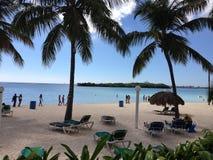 Personnes vertes de sable de mer de bleu de ciel de Don Juan Boca Chica de flore de végétation d'hôtel de voyage d'hôtel de la pa photographie stock libre de droits
