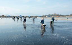 Personnes vietnamiennes travaillant au gisement de sel Photos stock