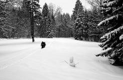 Persons Walking Through The Deep Snow Stock Photos
