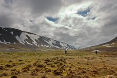 Persons Walking Tundra in Svalbard Royalty Free Stock Photo