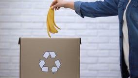 Persoon die banaanschil werpen in afvalbak, organisch afval het sorteren, voorlichting stock videobeelden