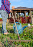 Persoon die een plantaardig flard in de lente wieden Stock Fotografie