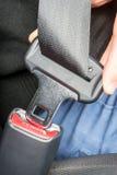 Persoon die een veiligheidsgordel in een auto vastmaakt Royalty-vrije Stock Afbeeldingen