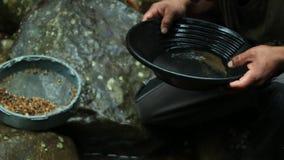 Persoon die goud met een kleine gouden pan zoeken bij een kleine stroom stock footage