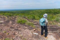Persoon die zich bovenop een berg bevinden eindeloze bos Tropisch Stock Fotografie