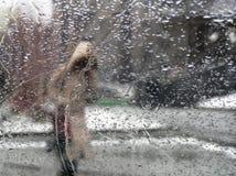 Persoon onder regen Stock Fotografie