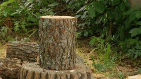 Persoons hakkend brandhout stock footage