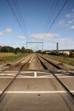 Perspectief dat van spoorweg is ontsproten Stock Afbeeldingen