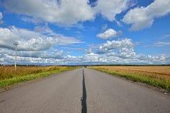 Perspectief op de weg en roggegebieden op de zijlijn Stock Foto
