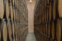 Perspectief van vaten voor het mezcal verouderen stock afbeeldingen