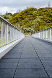 Perspectiva única de un puente vacío del pie con la hilera de árboles Backgr fotos de archivo libres de regalías