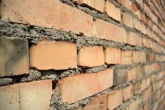 Perspectiva da parede de tijolo Fotografia de Stock Royalty Free