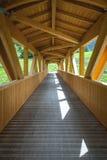 Perspectiva da ponte de madeira Imagem da cor Imagem de Stock Royalty Free