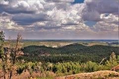 Perspectiva de la burguesía alta, bosque del Estado de Apache Sitgreaves, Arizona, Estados Unidos Imágenes de archivo libres de regalías