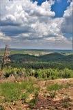 Perspectiva de la burguesía alta, bosque del Estado de Apache Sitgreaves, Arizona, Estados Unidos Fotos de archivo libres de regalías