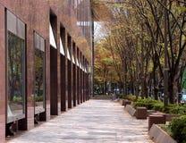 Perspectiva de la calle Imagen de archivo libre de regalías