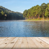 Perspectiva de madeira do assoalho no lago e na floresta Foto de Stock