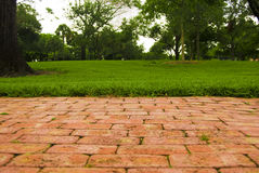 Perspectiva del parque Fotos de archivo