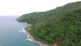 Perspectiva maravilhosa e palmeiras, de um helicóptero video estoque