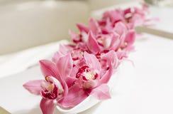 A perspectiva roxa das orquídeas arranja a flor na placa branca Fotografia de Stock Royalty Free
