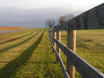 Perspective. Fence and shadow perspective with trees in the background royalty free stock photos