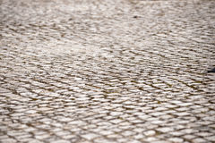 Perspective - Abstract - Cobblestone Texture - Rocks Royalty Free Stock Photos