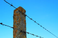Perspective of barbed wire on an old cement pole with alga Stock Photo