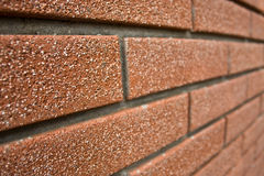 Perspective brick wall Stock Images