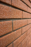 Perspective brick wall Stock Image