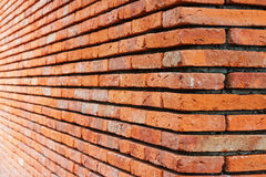 Perspective Brick wall Stock Photography