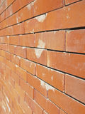 Perspective brick wall Royalty Free Stock Photo