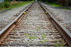 Perspective de voie ferrée avec Grey Gravel et les mauvaises herbes vertes photographie stock libre de droits