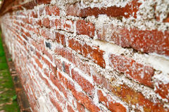 Perspective of old brick wall Stock Image