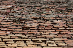 Perspective of old red brick wall Royalty Free Stock Photo