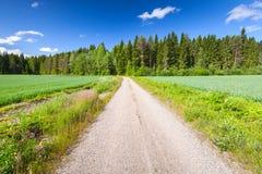 Perspective rurale vide de route de détroit sous le ciel bleu photographie stock libre de droits